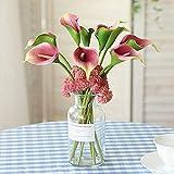 Bombillas De Lirio De Cala Hermosas Bombillas De Colores De Flores Regalos Increíbles Jardín Jardín / Jardín Encantador /-8-bulbos,Rosado