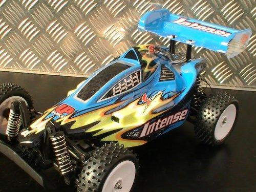 Amewi 22104 - Macchina Buggy Exceed Racing Realizzata in Scala 1:10, 4WD, RTR, Modelli Assortiti