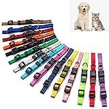 15 pièces Chiot ID Colliers pour chien Nylon Réglable Identification Colliers Adaptés pour petits chiens et chats (Ajustable 17.5-26cm)