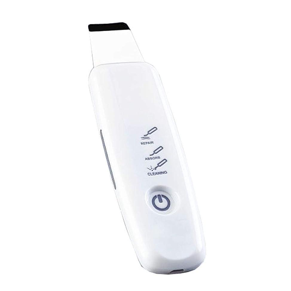 変更指令マグにきびの超音波シャベルへの美の器械の気孔の洗剤