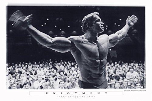 Enjoyment - Arnold Schwarzenegger Mr Olympia Madison Square Garden 27x40 (Motivational Poster)