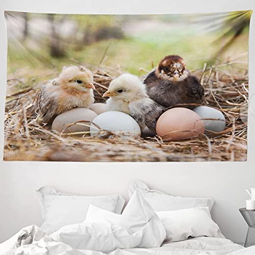 ABAKUHAUS Chicks Wandteppich & Tagesdecke, Kleine Hühner in Hay Eier, aus Weiches Mikrofaser Stoff Wand Dekoration Für Schlafzimmer, 230 x 140 cm, Mehrfarbig