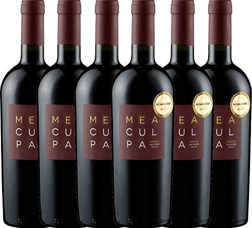 VINELLO 6er Weinpaket Rotwein - MEA CULPA Vino Rosso Italia - Cantine Minini mit Weinausgießer | halbtrockener Rotwein | italienischer Wein aus Apulien und Sizilien | 6 x 0,75 Liter