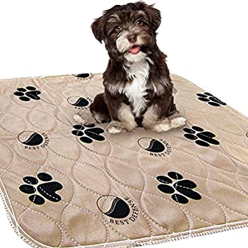 Best Defense Washable Pee Pads for Dogs 2- Pack Large 30 x 32 Reusable Dog Puppy Whelping and Training Pad for Home Apartment Crate and Travel