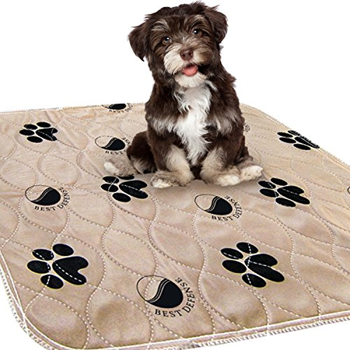 Best Defense Washable Pee Pads for Dogs, 2- Pack Large 30 x 32 Reusable Dog, Puppy, Whelping and...