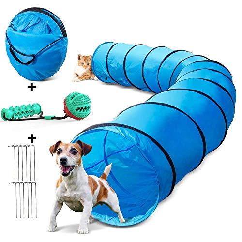Perro mascota entrenamiento de la agilidad del túnel de juegos con pelota...