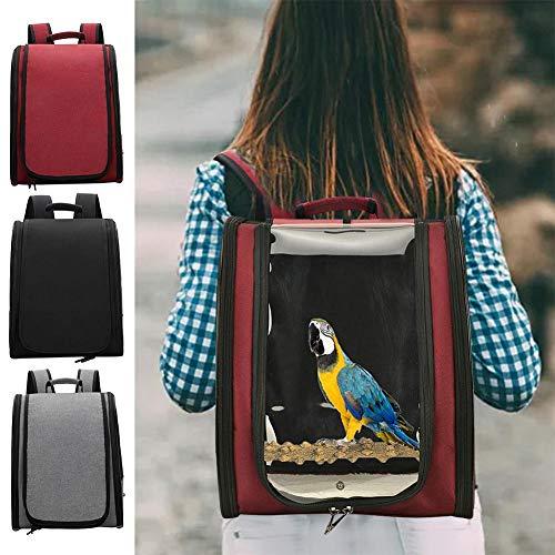 """Banane Transporttasche, Rucksack Für Papageien, Vögel, Mit Barschständer Für Sittiche Nymphensittiche Finken, Leicht Und Transparent, 13""""x 12"""" X 17"""", 3 Farben"""