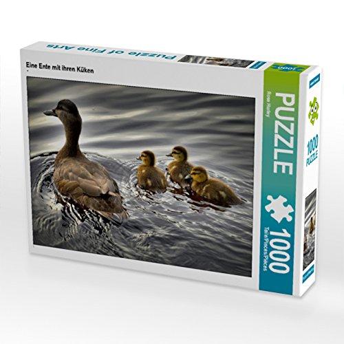 CALVENDO Puzzle Eine Ente mit ihren Küken 1000 Teile Lege-Größe 64 x 48 cm Foto-Puzzle Bild von Rose Hurley