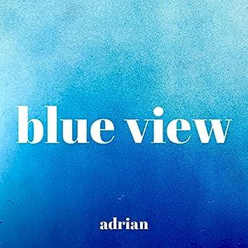 blue view