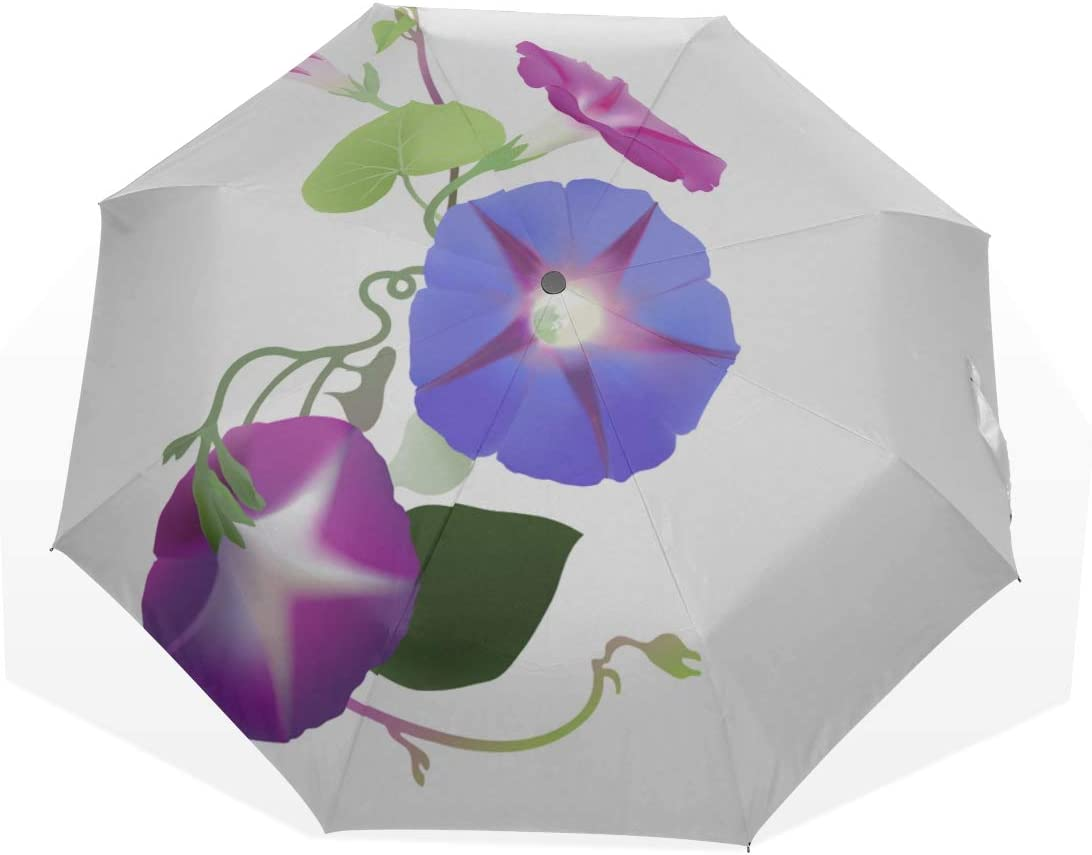 Umbrella Sun Protection Fragrant New arrival Lush Color Fold Glory 3 Morning Manufacturer OFFicial shop