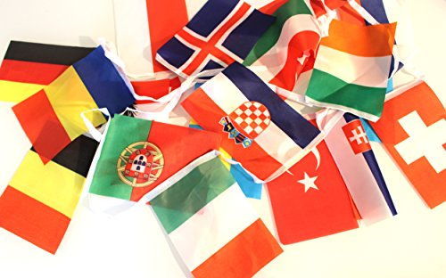 Slinger van de vlaggen van de 24 Pays Euro 2016