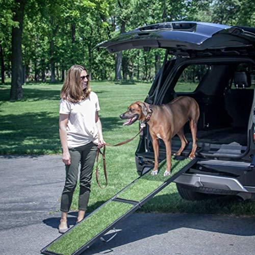 Flexible Teleskop Hunderampe Petwalk (Ideal Für Hunde, Die Nicht Mehr Springen), Perfekt Für Ihre Ängstlichen, Young, Old, Schwache Oder Kranke Hunde, Um in Und Aus Der Auto