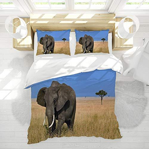 Elefant Microfaser 150x200cm Bettbezug Set und 2 mal 80x80cm Kissenbezug 3 teilig,Afrika Grünland Niedlich Bettwäsche Set mit Reißverschluss