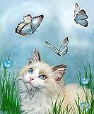 Pintura de diamantes 5D DIY diamante completo diamante redondo mariposa gato 20x30cm suministros de decoración de mosaico para la decoración de la pared del hogar
