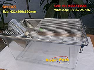Rodent Rat Mice & Hamster Cage Transparent- Good for breeding Small Pets …