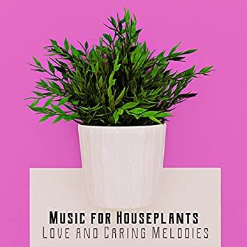 Music for Houseplants: Love and Caring Melodies – Provide Them Better Growth and Life Conditions Thanks to This Soothing Natural Music