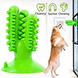 Suction Cup Dog Toy Cactus, Interactive Dog...