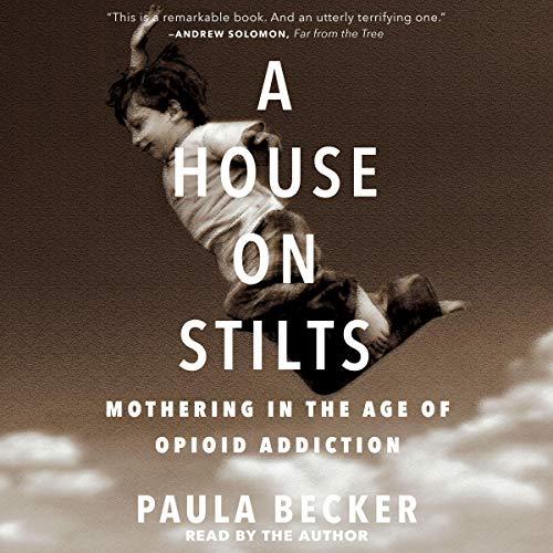 A House on Stilts audiobook cover art