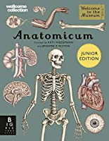 Anatomicum Junior (Welcome To The Museum)