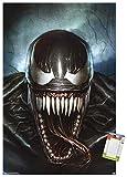 Trends International Marvel Comics - Spider-Man - Cover #569 Variant Wall Poster, 22.375' x 34', Poster & Mount Bundle
