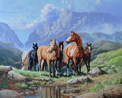 Pintar por Numeros para Adultos Niños DIY Lienzo Pintura al óleo Kit Hogar Decoración Regalo, Caballo de montaña, 40x50cm Sin marco