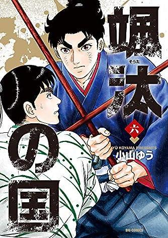 颯汰の国 (6) (ビッグコミックス)