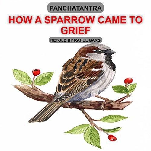 How a Sparrow Came to Grief audiobook cover art
