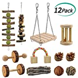 ERKOON 12 Pack Hamster Chew Toys Gerbil Rat Guinea Pig Chinchilla Chew Toys Accessories, Natural Wooden Dumbbells Exercise Bell Roller Teeth Care Molar Toy for Rabbits Bird Rabbits Hamster Gerbil