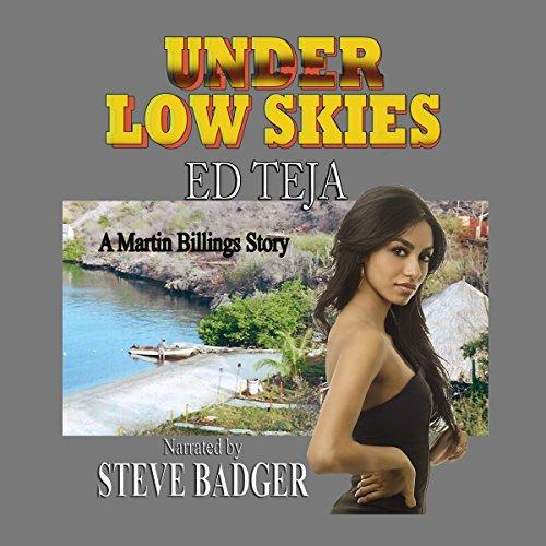 Under Low Skies audiobook cover art