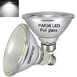 E27 PAR38 LED Kaltweiss 6000K,Wasserdicht,2er Pack, für Innen- und Außenbereich,15W,Nicht Dimmbar,Strahler Licht,Flutlicht Glühbirne,Kaltweiß LED PAR38 Glas Reflektorlampe(Ersetzt 70W-120W Halogen)
