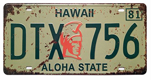 ERLOOD Hawaii DTX 756 Aloha State Retro Vintage Auto License Plate Tin...