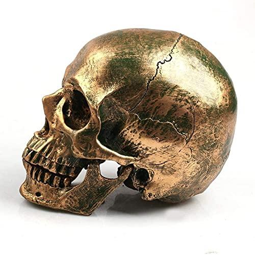 Resina Skull Model Decorazione di Halloween Decorazione...