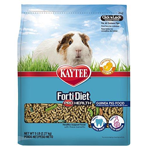 Kaytee Forti Diet Pro Health Food