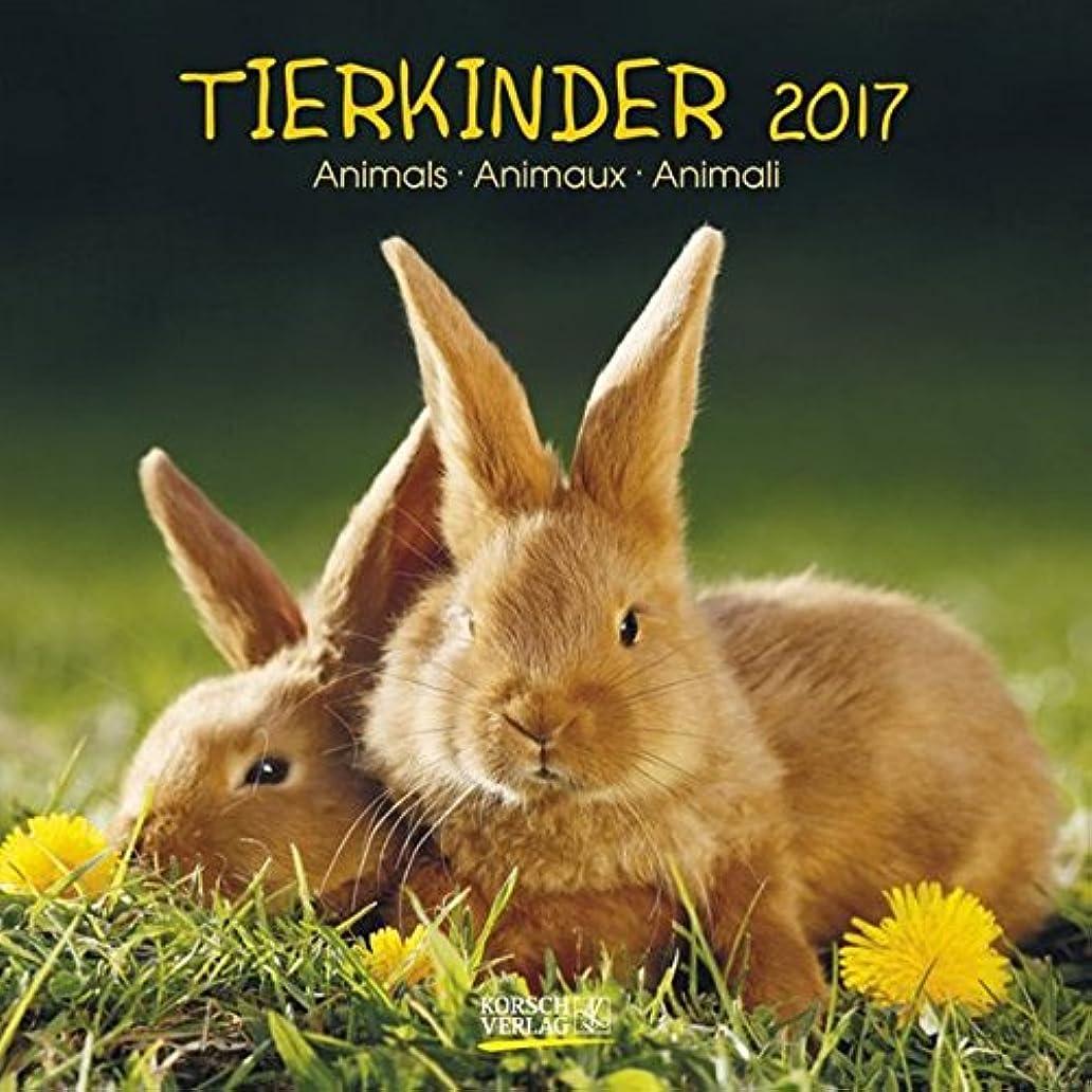 プロフィールパシフィック塩辛いTierkinder 2017. Broschuerenkalender: Broschuerenkalender mit Ferienterminen