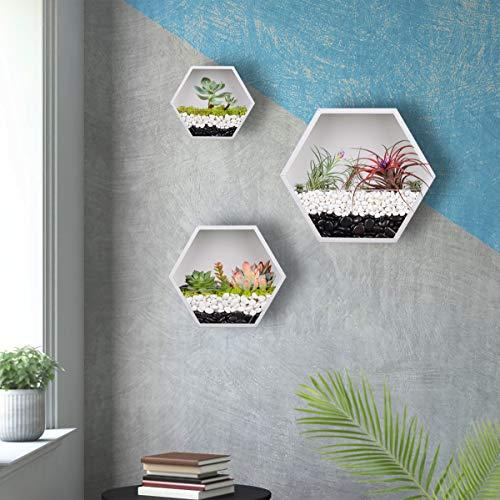 Macetero hexagonal colgante para pared, macetero de metal, soporte retro para plantas de aire, maceta vintage, maceta geométrica de hierro, contenedor de cactus suculentos, juego mixto de 3(blanco)