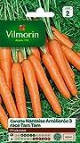 Vilmorin 3193142 Pack de Graines Carotte Nantaise Améliorée 3...