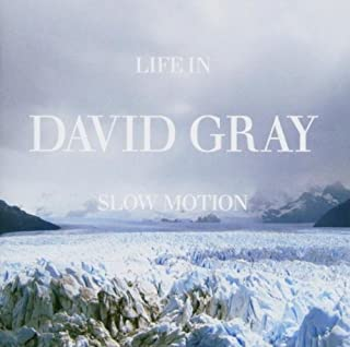 Life in Slow Motion by David Gray (2005-08-02)