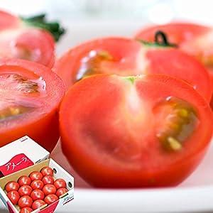 トマト 高糖度 フルーツトマト アメーラ 秀品 約1kg 12~20個 長野県産 静岡県産 (出荷予定時期:7営業日以内に出荷予定)