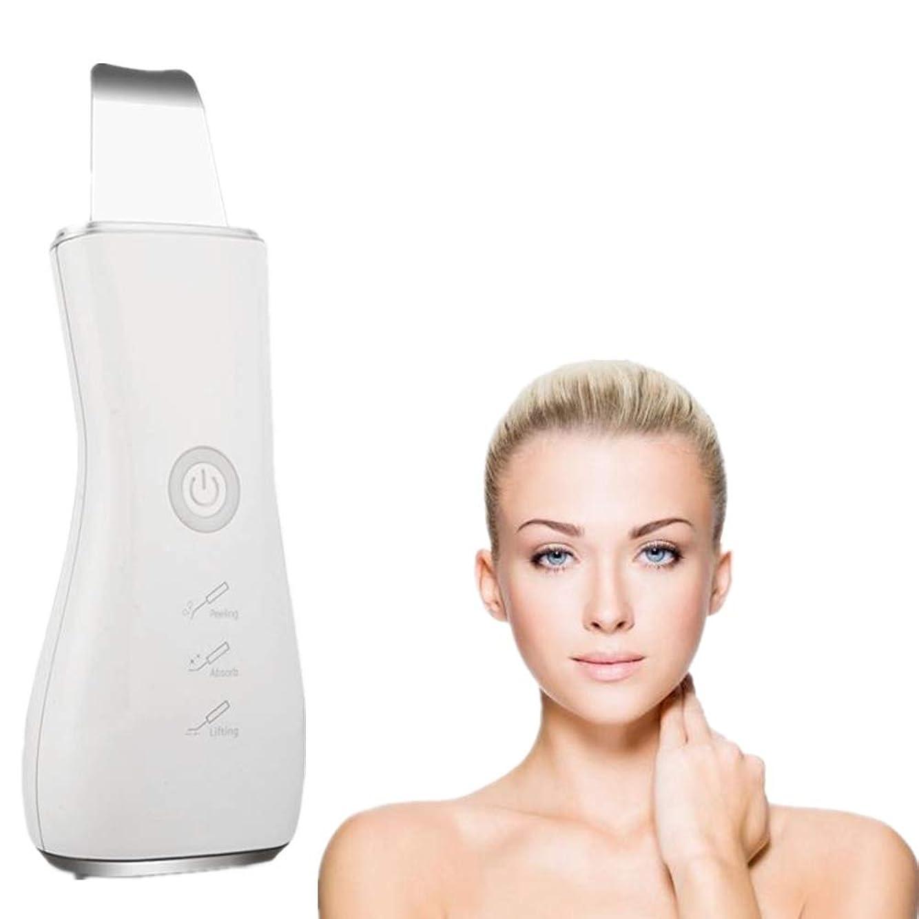 境界買い物に行くオーナメント顔の皮膚スクラバーブラックヘッドリムーバー毛穴充電式スキンスクラバー光子の若返り美容スキンクリーナーEMSクリーニングイオン導入モードUSB充電式美容ツール、シルバー