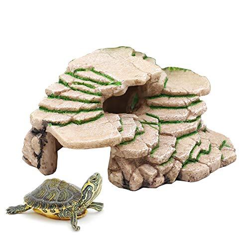 Bulz - Borde de esquema para tortugas de tortuga, plataforma de escalada, acuarios y terrarios, decoración para peces, Reptiles, anfibianos y pequeños animales