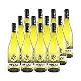 Les Tortues Colombard Sauvignon Côtes de Gascogne Blanc 2020 - Domaine d'Uby - Vin IGP Blanc du Sud-Ouest - Lot de 12x75cl - Cépages Colombard, Sauvignon Blanc