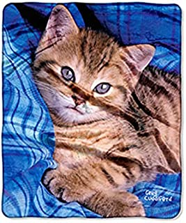 The Northwest Company Kitten On Blue Double Sided No Sew Throw Kit, Blue, 50 x 60-inches