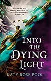 Into the Dying Light: Book Three of The Age of Darkness (English Edition)