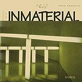 Artistas de lo inmaterial (Arte Hoy nº 14)