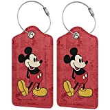 2 Pack Anime Luggage Tags with Leather Name ID Labels for Travel Bag Suitcase Full Privacy Cover