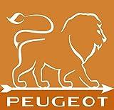 Peugeot Set Paris Pfeffermühle und Salzmühle | schoko natur 40 + 30 cm | Dekomiro Geschenkset mit 100 gr. Salz - 4