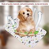 KUIDAMOS Alfombrilla para Cachorros, Suave y cómoda, para Perros, Cachorros, Gatos, Accesorio para Arena(40 * 60cm)