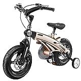 QSYY Bicicletas para Niños De Estilo Libre, Bicicletas De Equilibrio para Niños Y Bicicletas para Niñas con Ruedas De Entrenamiento, 12 Pulgadas, 14 Pulgadas, 16 Pulgadas, 18 Pulgadas,12''
