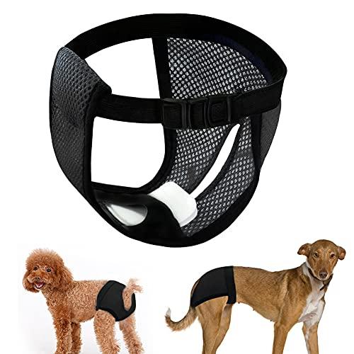 LeerKing Höschen Hündin Hundehose 2er Pack mit Damenbinde für die Monatsblutung Waschbare Schutzhöschen Hundewindeln schutzhose 5 Größe für Hündinnen und Katzen Schwarz L