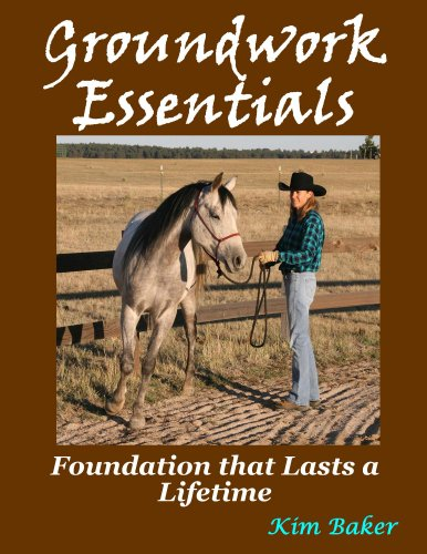 Groundwork Essentials (English Edition)